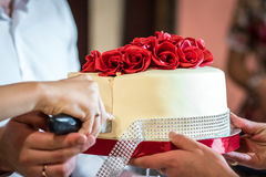 Torta nunziale del coltello di taglio Fotografia Stock Libera da Diritti