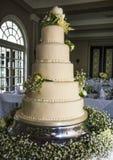 Torta nunziale sbalorditiva Fotografia Stock