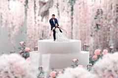 Torta nunziale, sposa e sposo, proposta di matrimonio immagini stock