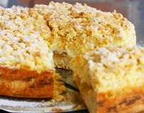 Torta o tarta del albaricoque Imagenes de archivo