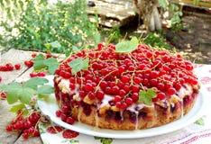 Torta ou bolo de esponja com os corintos vermelhos e as sementes de papoila Fotografia de Stock Royalty Free