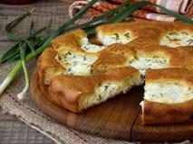 Torta salata con la ricotta ed il giovane aglio verde Fotografia Stock Libera da Diritti