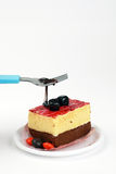 Torta squisita con cioccolato Fotografia Stock