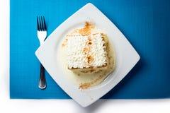 Torta tresleches Arkivbild