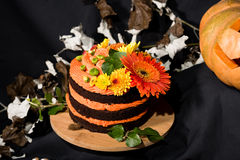 Torta y calabaza de Helloweens Imágenes de archivo libres de regalías