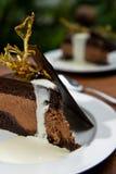 Torta y crema Imagen de archivo libre de regalías