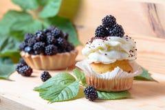 Tortas de Blackberry con las bayas imagenes de archivo