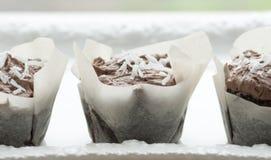 Tortas de la taza del coco del chocolate Imágenes de archivo libres de regalías