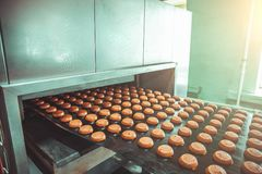 Tortas en la banda transportadora automática, proceso de la hornada en fábrica de la comida, cierre para arriba fotos de archivo libres de regalías