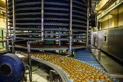 Tortas en la banda transportadora o la línea automática, proceso de la hornada en fábrica de la confitería Industria alimentaria, imagen de archivo