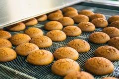 Tortas en la banda transportadora o la línea automática, proceso de la hornada en fábrica de la confitería Industria alimentaria, foto de archivo libre de regalías