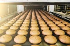 Tortas en la banda transportadora o la línea automática, proceso de la hornada en fábrica de la confitería Industria alimentaria, fotografía de archivo libre de regalías