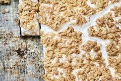 tortas en las bandejas de la hoja Imagen de archivo libre de regalías