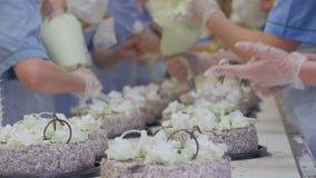 Tortas en un transportador Trabajadores que adornan las tortas en una fábrica de la torta Día ocupado en la planta de la confiter almacen de video