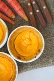 Tortas hechas en casa del queso de la zanahoria Foto de archivo libre de regalías