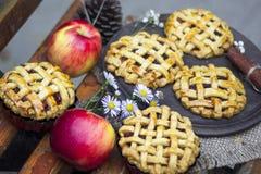 Tortas orgânicas caseiros da mão da maçã, stciks da canela e maçãs fotos de stock