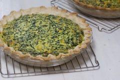 Torte al forno domestiche di ricotta degli spinaci Immagini Stock Libere da Diritti