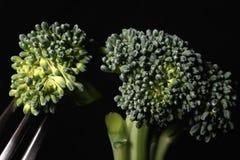 Torte dei broccoli sul nero e dei broccoli su una forcella fotografie stock
