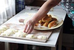 Torte della Camera con cipolle ed uovo Fotografia Stock Libera da Diritti