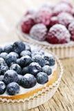 Torte della frutta immagini stock libere da diritti