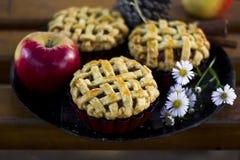 Torte della mano della mela, stciks della cannella e mele organici casalinghi fotografie stock