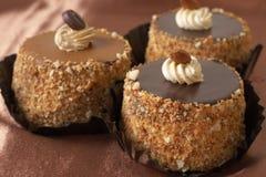 Torte di cioccolato miniatura Immagini Stock