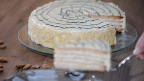 Torte esterhazy delizioso e una fetta di dolce sul piatto Dolce tradizionale di Esterhazy dell'ungherese stock footage