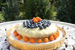 Torte mit Schokolade ganache Lizenzfreies Stockfoto