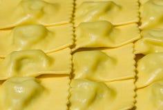 tortelli erbetta δ στοκ εικόνα με δικαίωμα ελεύθερης χρήσης