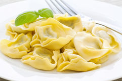 Tortellini. Italian home made Tortellini on a white plate royalty free stock photography