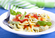 Tortellini. With tomato and basil royalty free stock images