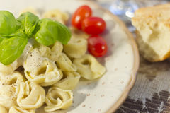 Tortellini with Alfredo Sauce Royalty Free Stock Photography