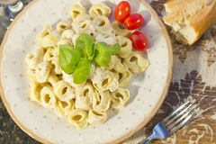 Tortellini with Alfredo Sauce Stock Photography