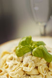 Tortellini with Alfredo Sauce Royalty Free Stock Image