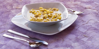 Tortellini in broth Stock Image