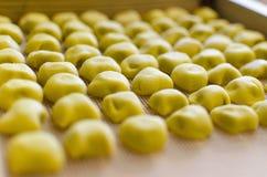 Tortellini di Parma Stock Photography