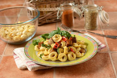 Tortellini with eggplants and peppers Royalty Free Stock Image
