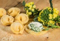 Tortellini hecho en casa, abierto italiano y cerrado, llenados de queso del ricotta y de bróculi fresco Imagen de archivo