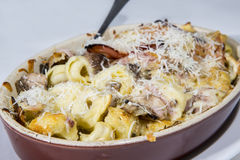 Tortellini italian style with mushroom, chicken and cheese pasta Stock Photo