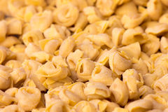 Tortellini italienska pastas royaltyfri fotografi