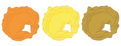 Tortellini lined up. Royalty Free Stock Photo