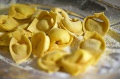 Tortellini makaron Zdjęcia Stock