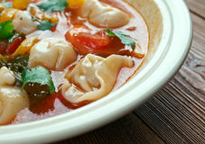 Tortellini Minestrone Soup Royalty Free Stock Photos