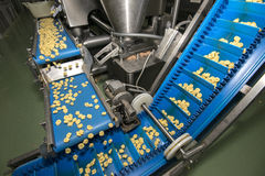 Tortellini Pasta production line Stock Image