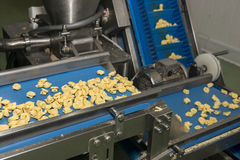 Tortellini Pasta production line Royalty Free Stock Image