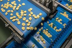 Tortellini Pasta production line Stock Photos