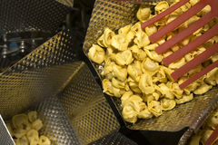 Tortellini Pasta production line Royalty Free Stock Photography