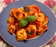 Tortellini. Some italian tortellini with a sauce of tomatoes stock photo