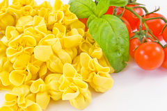 Tortellini stuffed with meat Stock Photography