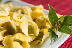 Tortellini stuffed with spinach Stock Image